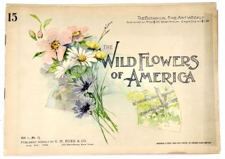 Botanical Fine Art Weekly: The Wild Flowers of America; Vol. 1, No. 1 - 15